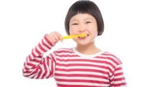 ヒルナンデス歯ブラシ